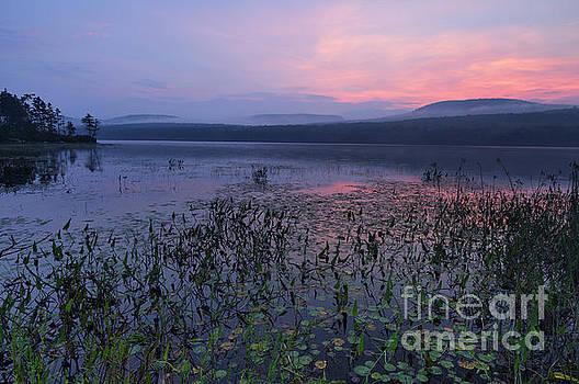 Lake Tarleton - Piermont New Hampshire by Erin Paul Donovan