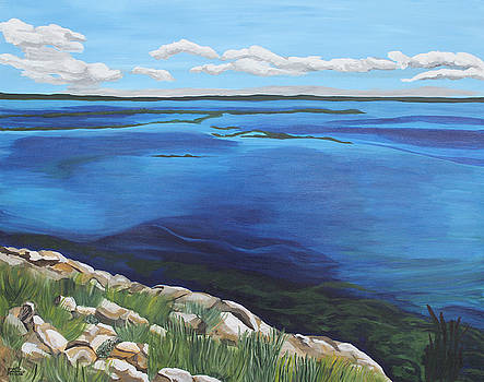 Lake Toho by Annette M Stevenson
