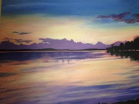 Lake View Sunset by Barbara Remensnyder
