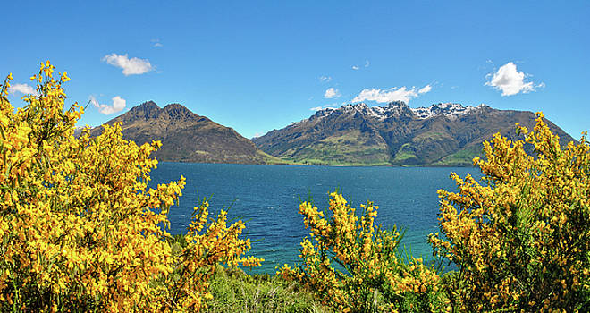 Lake Wakatipu by Megan Martens