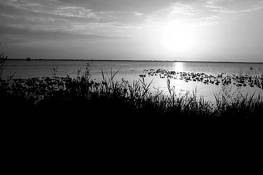 Lake Washington3 by Charles Van Riper