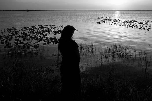 Lake washington4 by Charles Van Riper