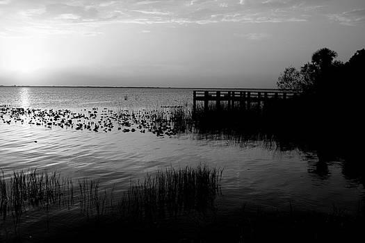 Lake washington5 by Charles Van Riper