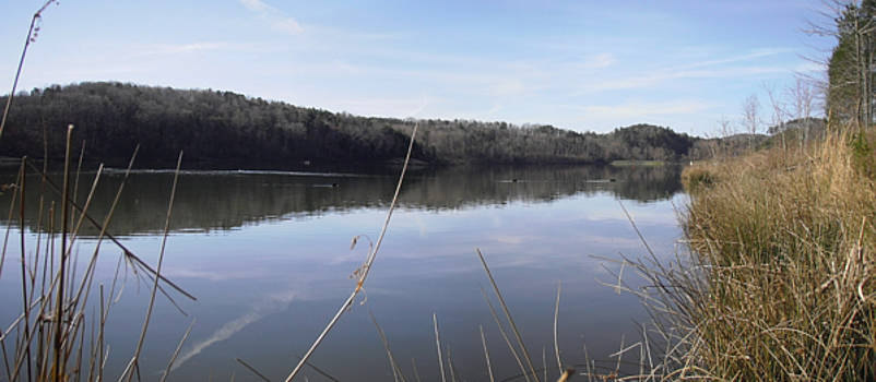 Lake Zwerner Early Spring by Nicole Angell