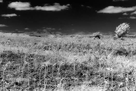 Lakeland Fells by Keith Elliott
