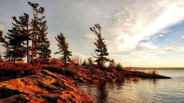 Lakeshore by Bryan Smith