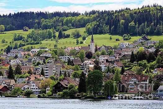 Lakeshore of Zurichsee Switzlernad by Louise Heusinkveld