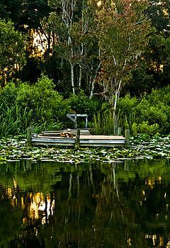 Kathi Shotwell - Lakeside 1