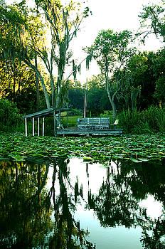 Kathi Shotwell - Lakeside 3