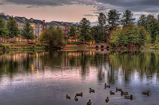 Lakeside at Milton Park by Anna Rumiantseva