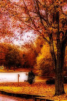 Lakeside Autumn by Barry Jones