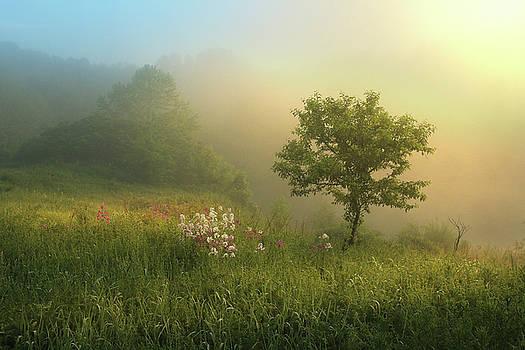 Lakeside Dream by Rob Blair