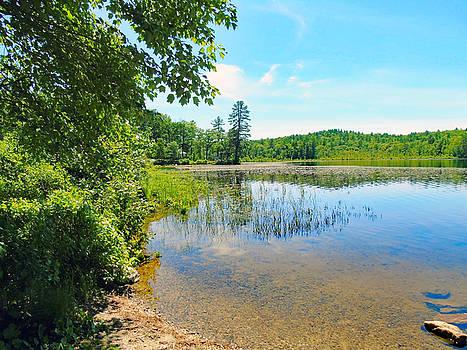 Lakeside by Susan Lafleur