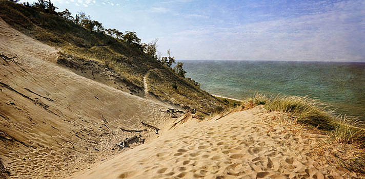 Laketown Dune Panorama by Michelle Calkins