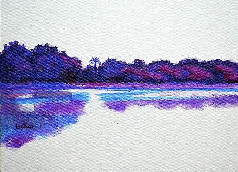 Lal Bagh Lake Panorama 2 Diptych by Usha Shantharam