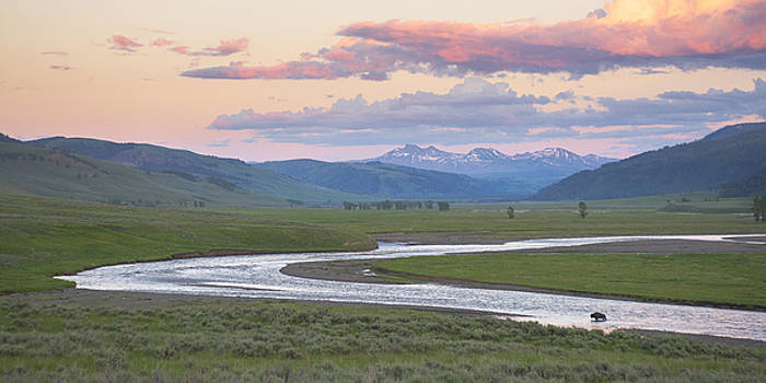Scott Wheeler - Lamar Valley Panorama