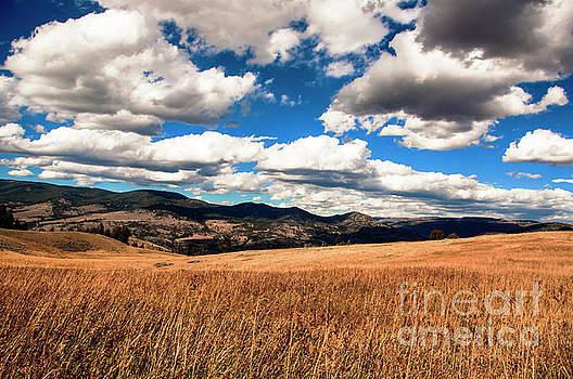 Lamar Valley by Steven Natanson