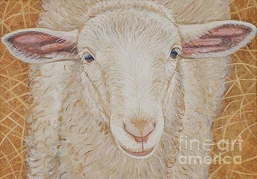 Lamb of God by Christine Belt