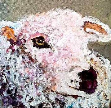 Lambie Pie by Sandy Welch