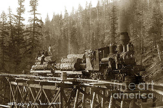 California Views Mr Pat Hathaway Archives - LaMoine Lumber and Trading Co. No. 1 circa 1907