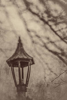 Lamp in Winter w Tree Branches by YoPedro