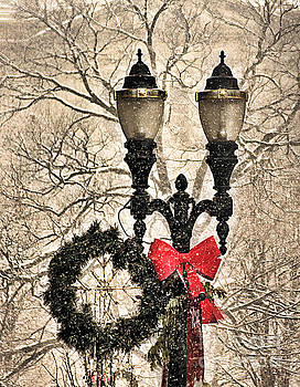 Matthew Winn - Lamp Post in the Snow