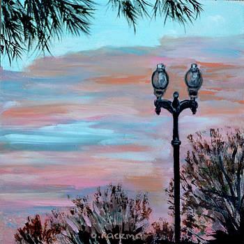 Lamp post by Olga Kaczmar