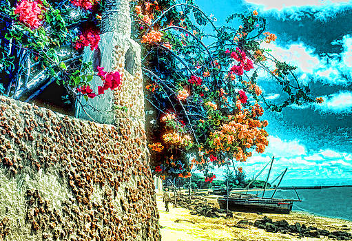Dennis Cox - Lamu Beach