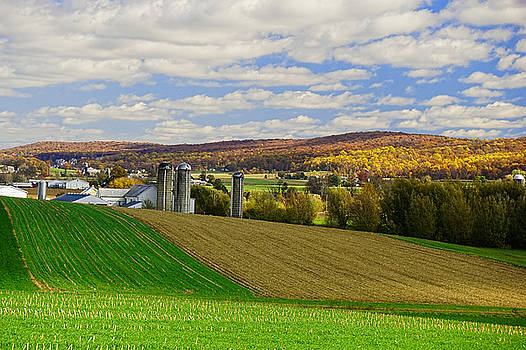 Lancaster County Amish Farm  by William Jobes