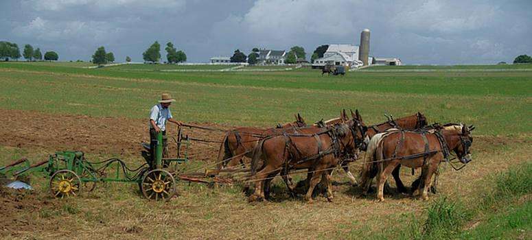 Eleanor Bortnick - Lancaster Farm
