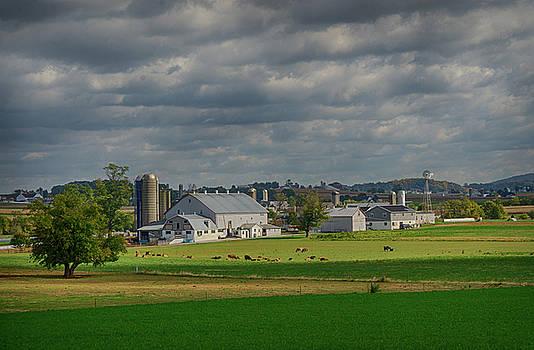 Eleanor Bortnick - Lancaster Farmland