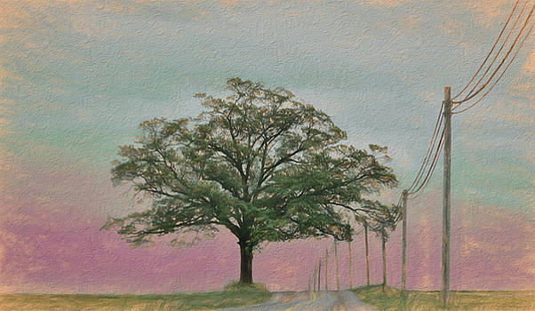 Lancaster Pink Sky by Tricia Marchlik
