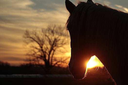 Lancaster Sunset by Doug Hoover