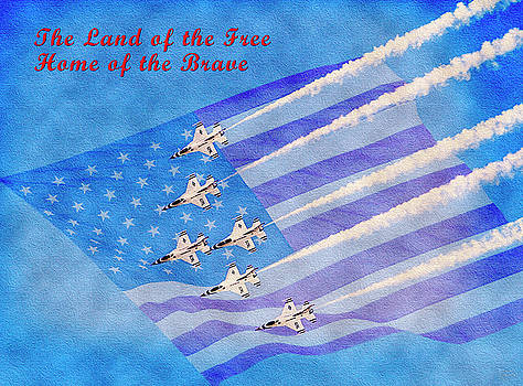 Land of the Free Home of the Brave by David Millenheft