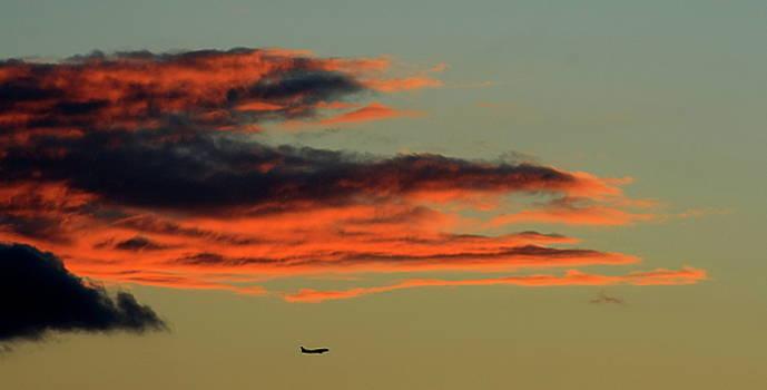 Landing At Sundown by Charles Shedd