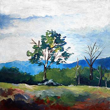 Landscape 1 by Joseph A Langley