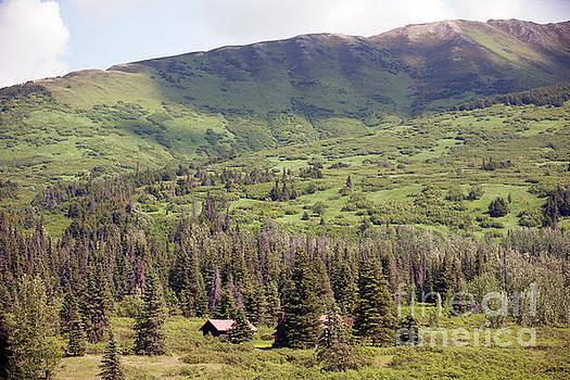 Landscape Alaska  by Chuck Kuhn
