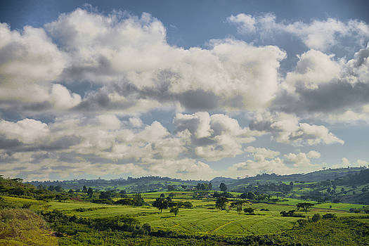 Landscape by Balram Panikkaserry