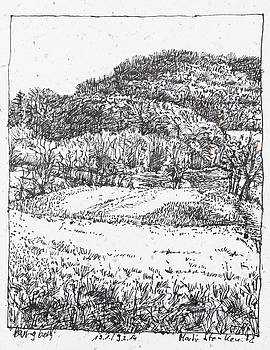 Martin Stankewitz - Landscape drawing in ink, hills with forest