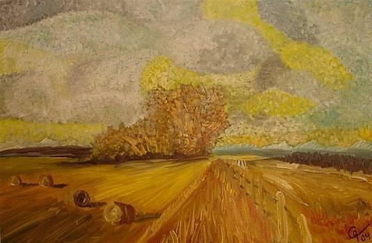 Landscape by Gunter  Tanzerel