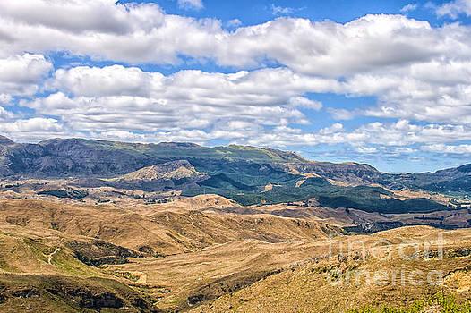 Patricia Hofmeester - Landscape in New Zealand