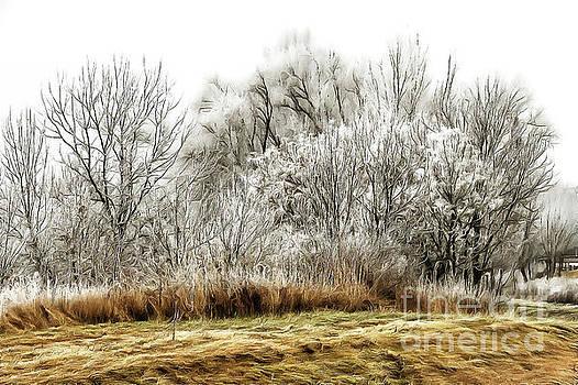 Landscape in winter by Odon Czintos