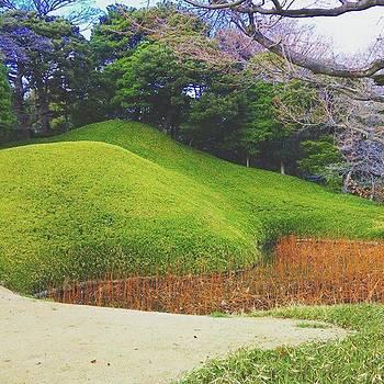 #landscape #nature  #park #tree by Bow Sanpo