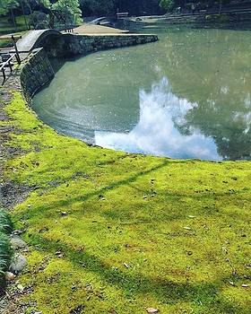 #landscape  #landscapes  #lake #moss by Bow Sanpo