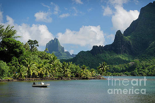 Landscape on green Moorea by IPics Photography