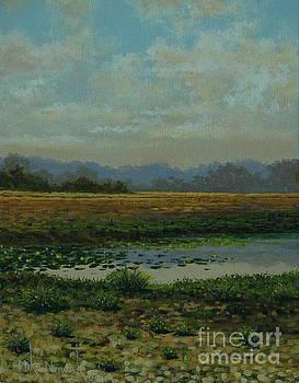 Landscape series no.2  by Michael Nowak