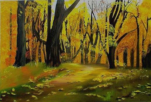 Landscape by Shweta
