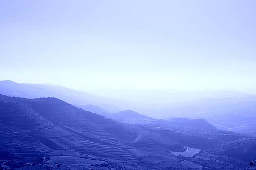 Landscape by Studio Zoe