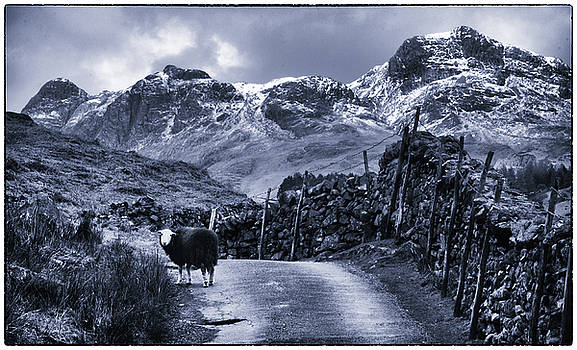 Langdale Pikes by Xenmint Photography