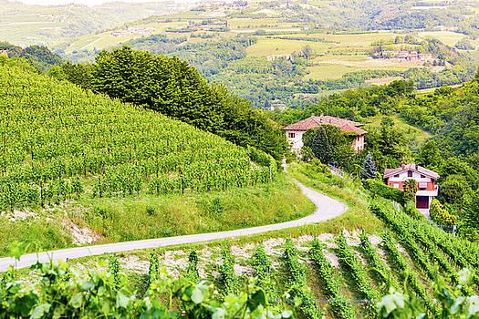 Francesco Riccardo Iacomino - Langhe region